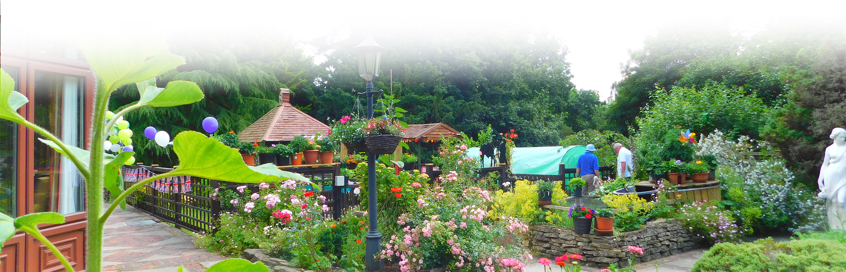 Pink and Red flowers in garden at Steep house Nursing Home Petersfield